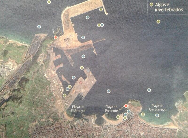 Niveles de contaminación en el puerto de Gijón